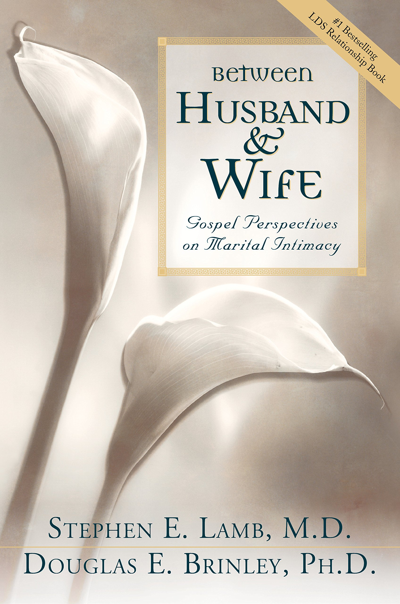 Image for BETWEEN HUSBAND AND WIFE -  Gospel Perspectives on Marital Intimacy