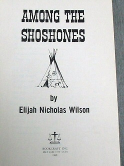 Image for AMONG THE SHOSHONES