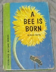 Image for A BEE IS BORN