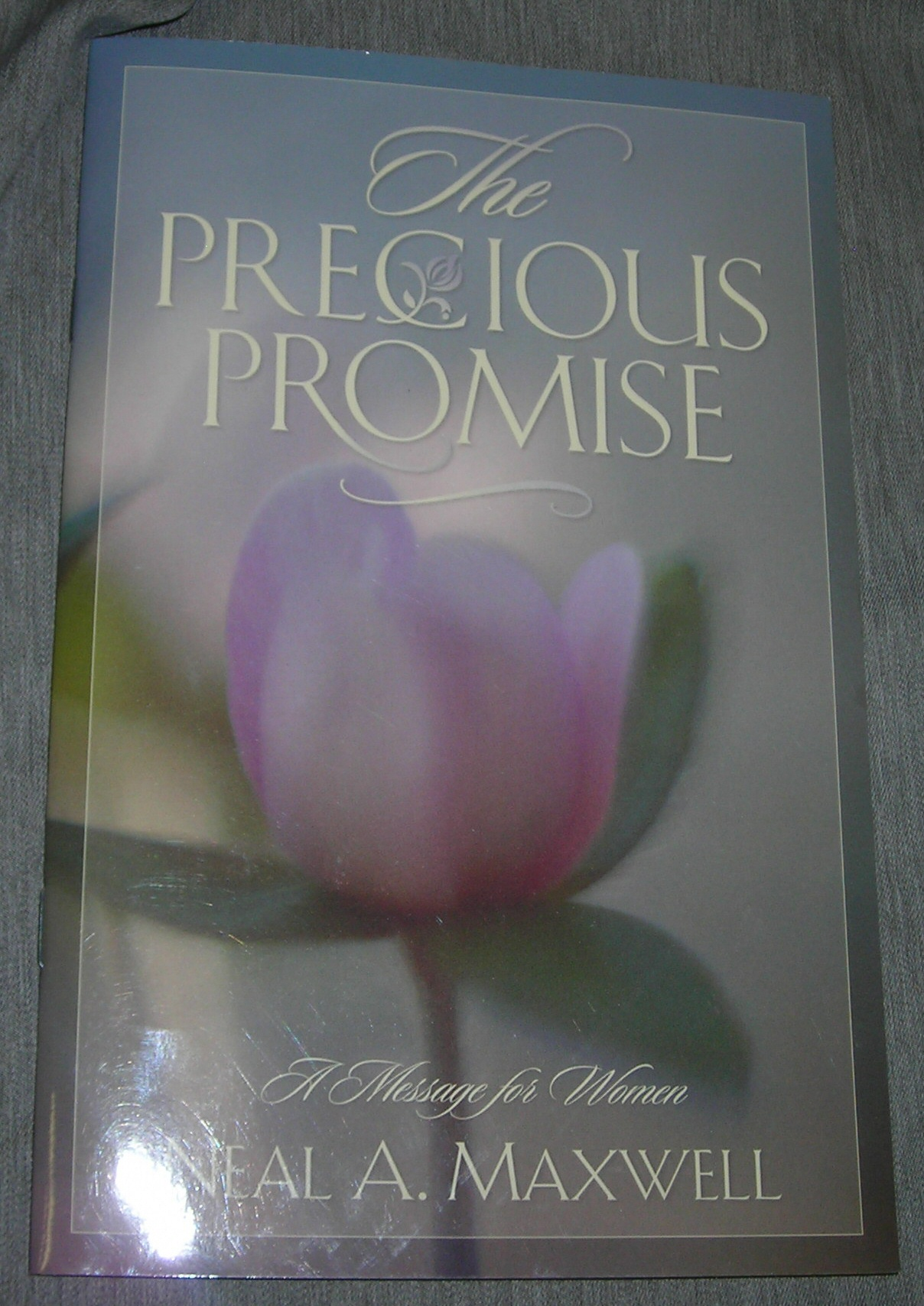Image for THE PRECIOUS PROMISE -  A message for women