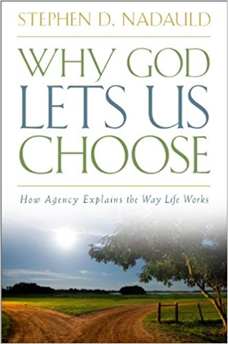 Image for Why God Lets Us Choose - How Agency Explains the Way Life Works