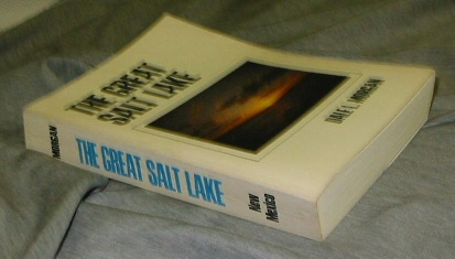 Image for THE GREAT SALT LAKE
