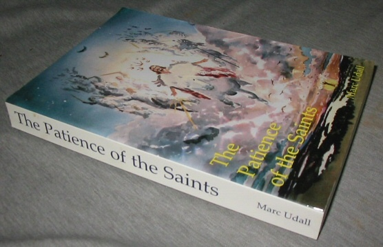 Image for THE PATIENCE OF THE SAINTS - A Hypothesis Based on the Revelation of John the Beloved.