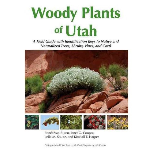 Image for Woody Plants of Utah -  A Field Guide with Identification Keys to Native and Naturalized Trees, Shrubs, Cacti, and Vines