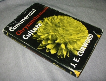 Image for Commercial chrysanthemum culture