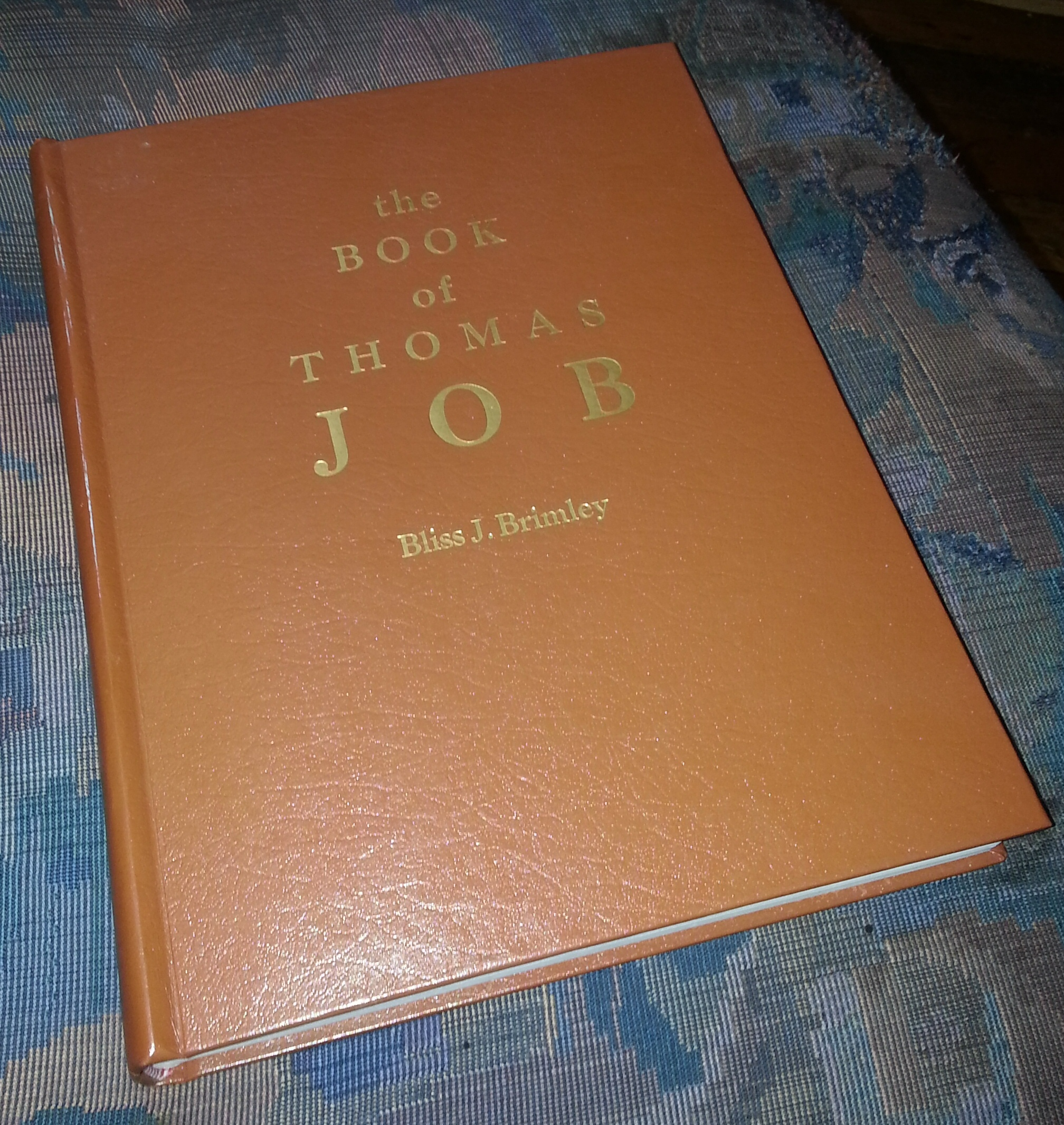 Image for The Book of Thomas Job