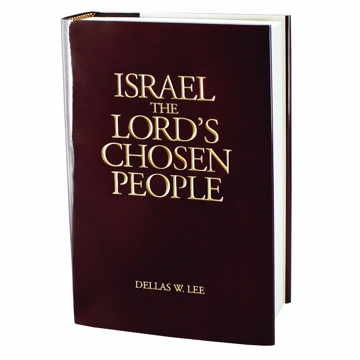 Image for Israel, The Lord's Chosen People