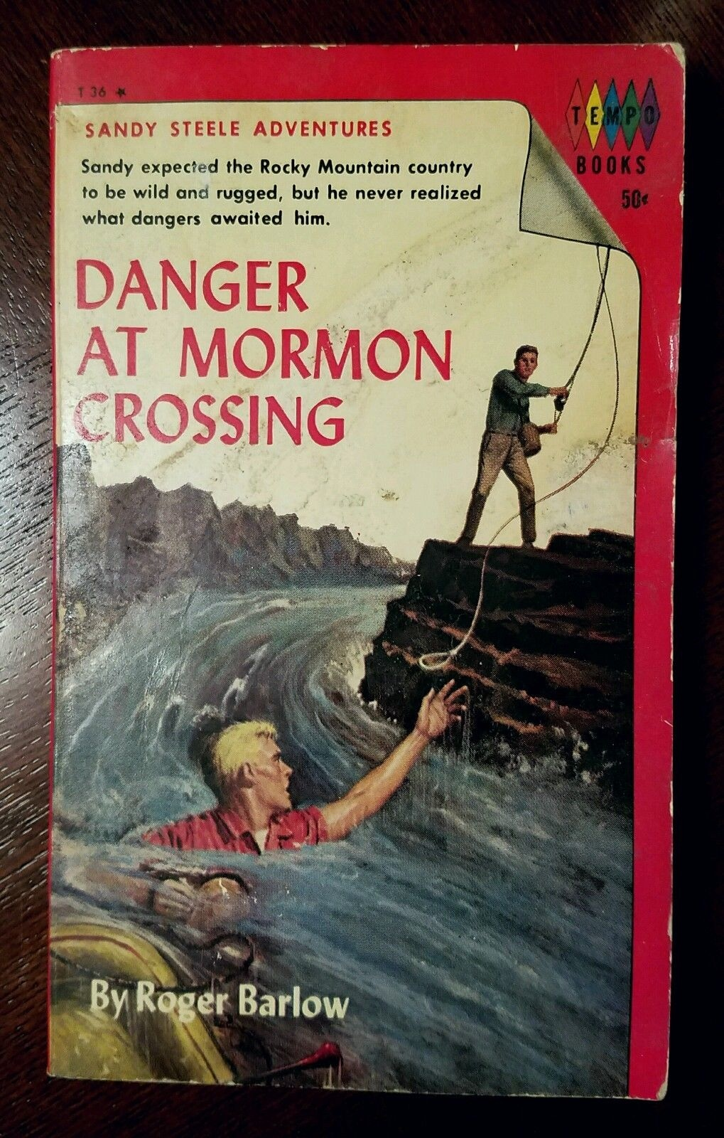 Image for Danger at Mormon Crossing