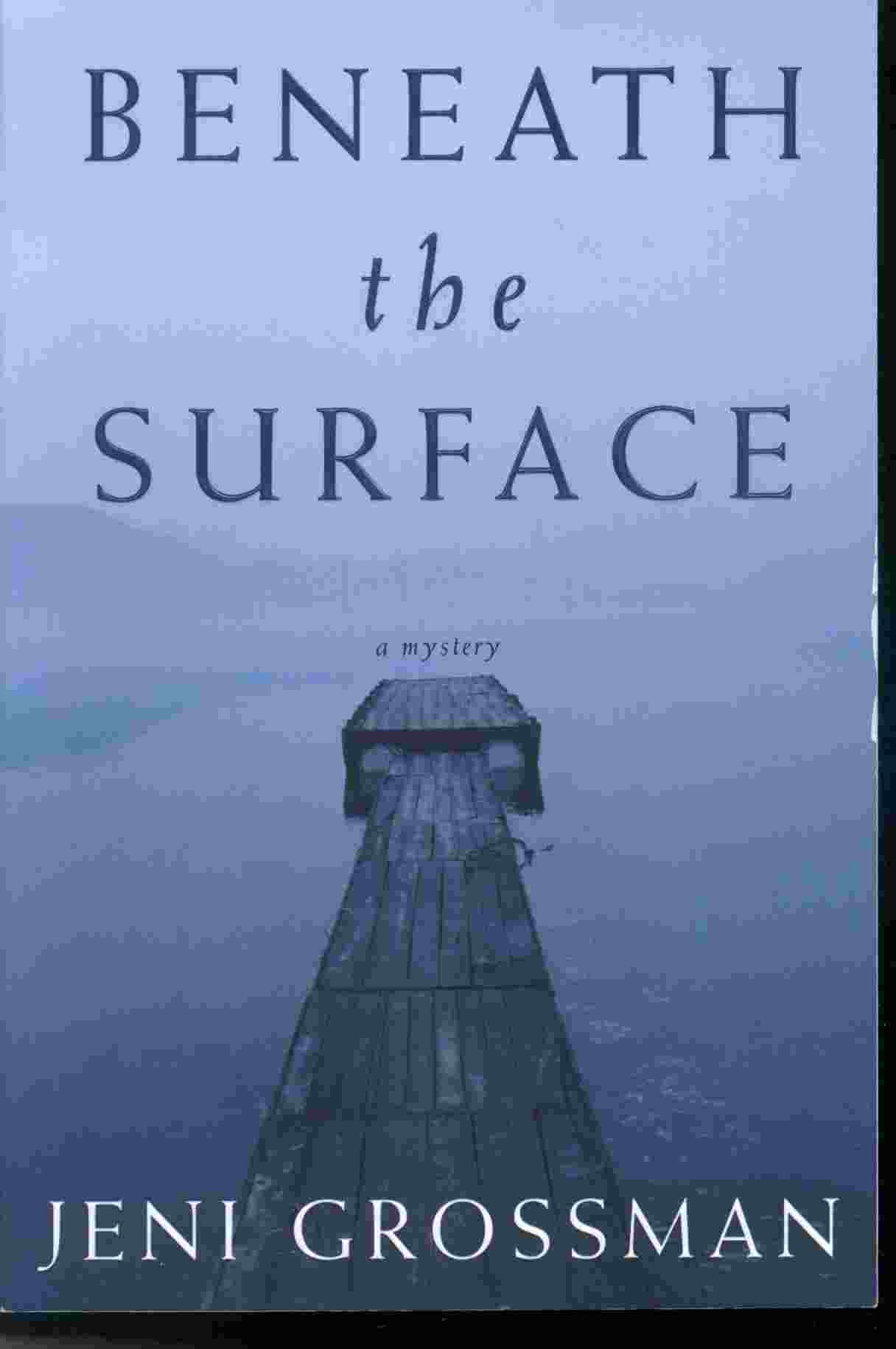Image for BENEATH THE SURFACE -  A Novel